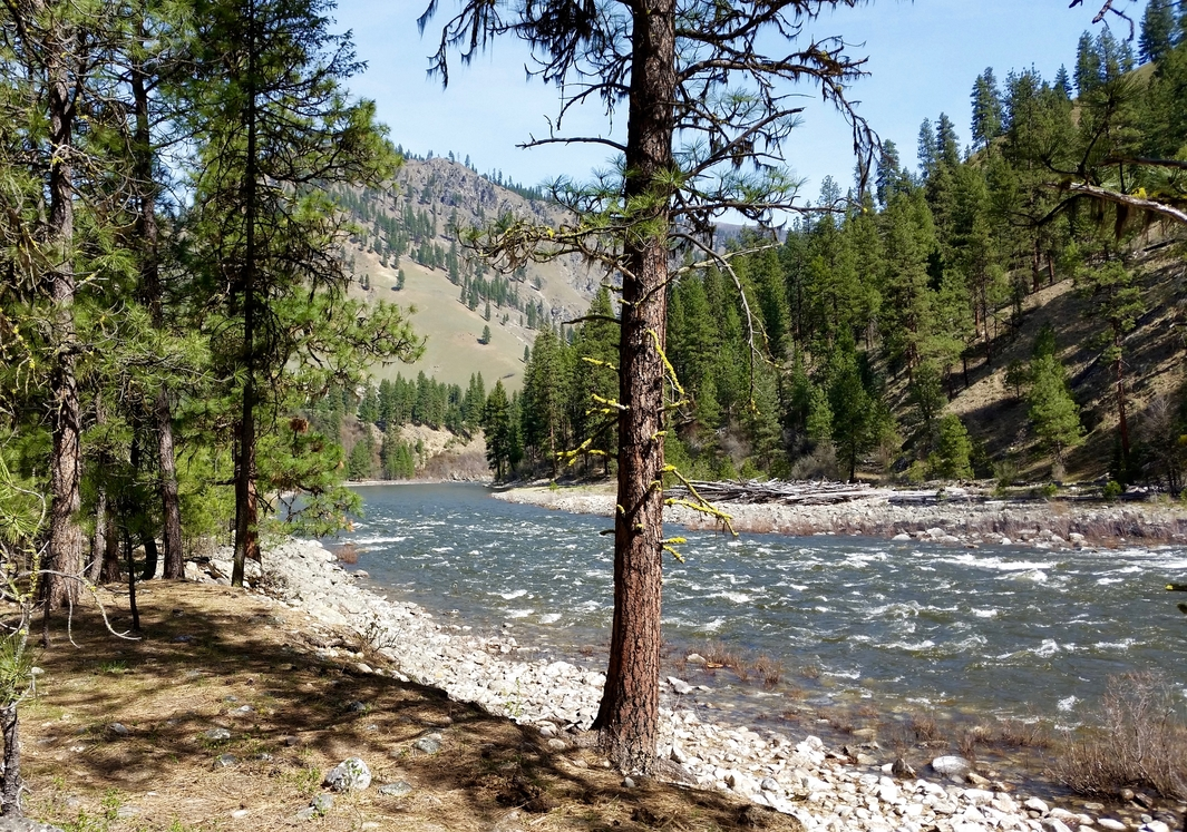 Idaho's Scenic Rivers