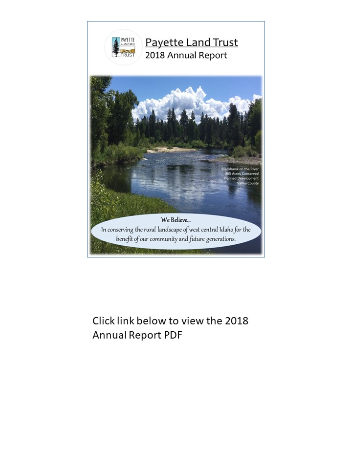 2018-annual-report-cover-page-2